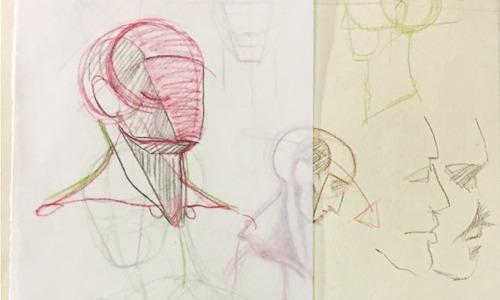 anatomy-web