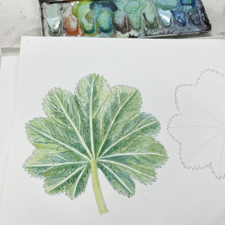Botanical Watercolor: Painting Leaves (video)